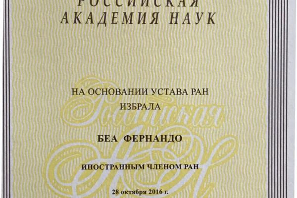 Diploma de académico